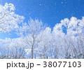 樹氷 38077103