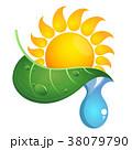 太陽 葉っぱ グリーンのイラスト 38079790