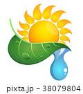 太陽 葉っぱ しずくのイラスト 38079804