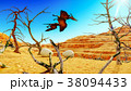 Egg and pterodactyl 3d rendering 38094433