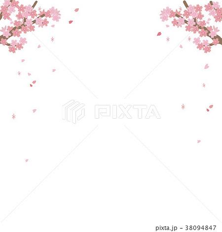 桜 満開 イラスト 38094847