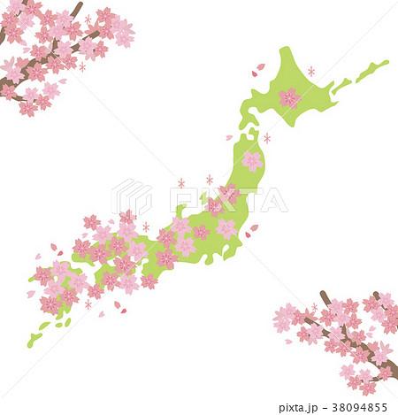 桜前線 イラスト 38094855