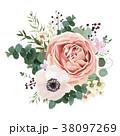 バラ イソギンチャク アネモネのイラスト 38097269