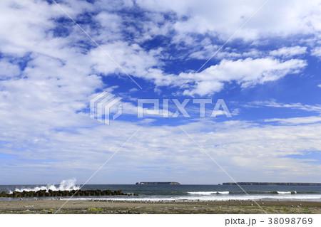 北海道根室市 ユルリモユルリ島 38098769