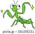 カマキリ 38109231