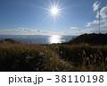 三浦半島 剱崎 38110198
