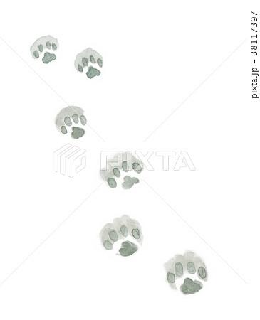 水彩で描いた雪の上の猫の足跡 38117397