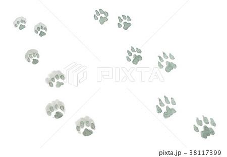 水彩で描いた雪の上の犬と猫の足跡 38117399