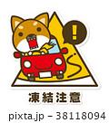 犬 柴犬 凍結注意のイラスト 38118094