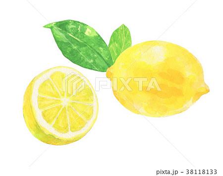 レモン 水彩のイラスト素材 38118133 Pixta