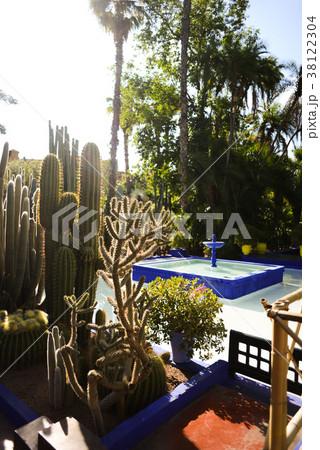 モロッコ マラケシュ イヴ・サンローラン フレンチモロッコ サボテン 中東の庭 サボテンのある庭 38122304