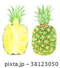 パイナップル パイン カットのイラスト 38123050