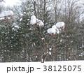 雪景色 長野 38125075