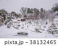 玉泉院丸庭園 雪吊り 38132465