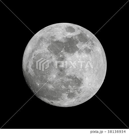 望月 38136934