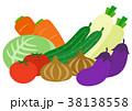 野菜 食材 植物のイラスト 38138558