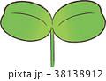 双葉 新芽 芽のイラスト 38138912