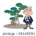 庭師 松 男性のイラスト 38149391