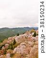 花 桜 山の写真 38150234