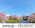 東京 千鳥ヶ淵の春 38150237