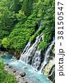 滝 しらひげの滝 川の写真 38150547