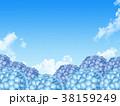 紫陽花 38159249