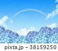 紫陽花 38159250