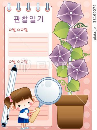 観察 花 植木鉢 38160076