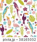 鳥 トロピカル 熱帯のイラスト 38165032