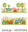 庭 庭園 ベクトルのイラスト 38165062