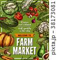 野菜 農園 スケッチのイラスト 38173081