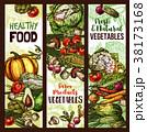 野菜 スケッチ 図案のイラスト 38173168