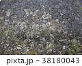 城壁 岩 テクスチャ 38180043