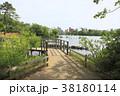 洗足池 岸辺の遊歩道 ボート 水生植物園 38180114
