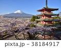 桜 富士山 富士吉田市の写真 38184917