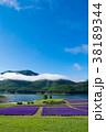 ラベンダー畑と湖 金山湖 南富良野 38189344