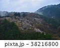 山桜 山 風景の写真 38216800