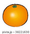 ベクター 果物 果実のイラスト 38221630