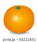 ベクター 果物 果実のイラスト 38221631