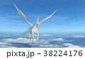 馬 ペガサス 白色のイラスト 38224176