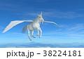 馬 ペガサス 白色のイラスト 38224181