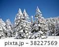 樹氷 38227569