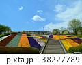 花畑 38227789