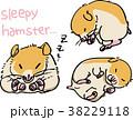 眠いハムスター 38229118