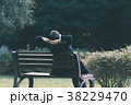 女性 ベンチ 人物の写真 38229470