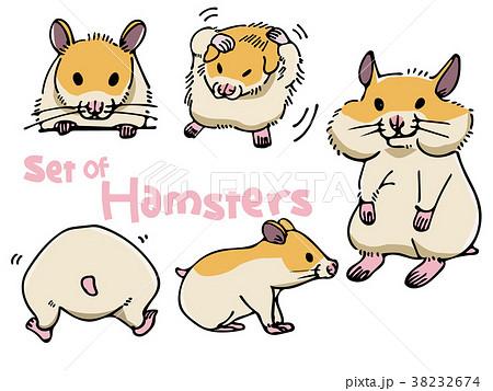 ハムスター かわいい仕草のセット ベクターイラストのイラスト素材