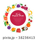 Fresh organic fruit - modern colorful vector 38236413