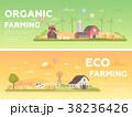 Organic farming - set of modern flat design style 38236426