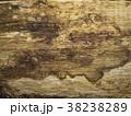 朽ちかけの木の表面 38238289