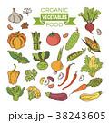 組み合わせ ベジタブル 野菜のイラスト 38243605